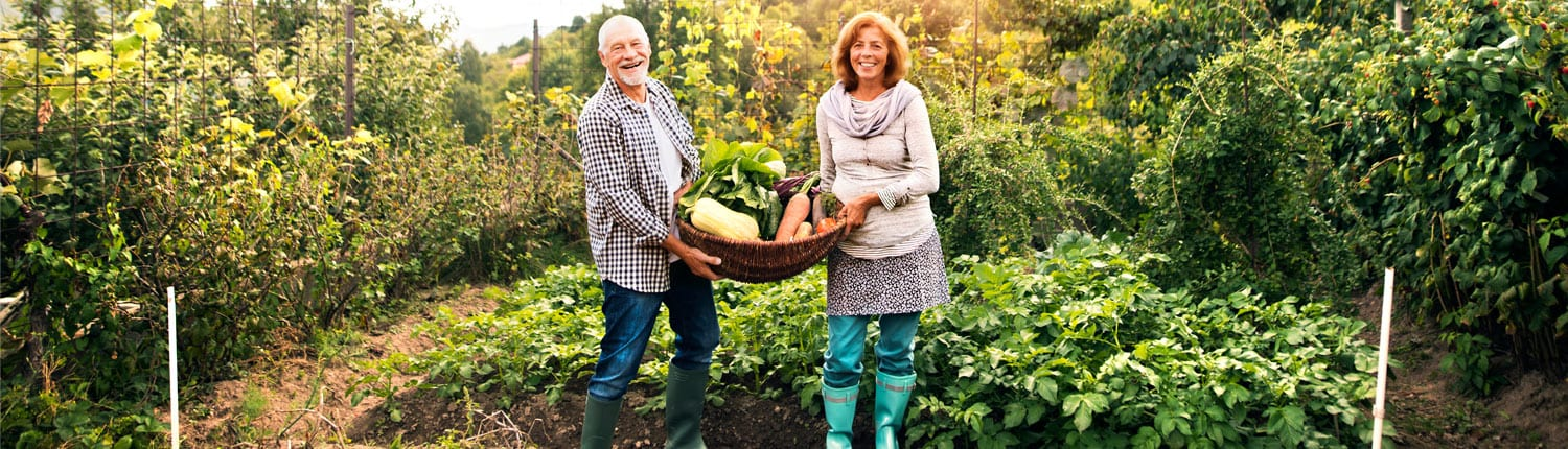 Do these stretches to a better gardening experience