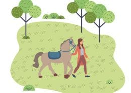 Horseback Riding Therapy Equine Therapy