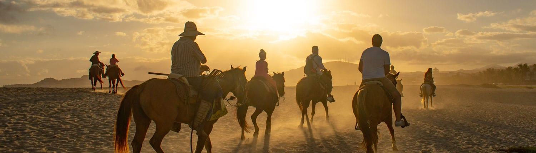 Horseback Riding Therapy
